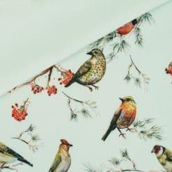Softshell - Pastell-Mintgrün mit Vögelchen
